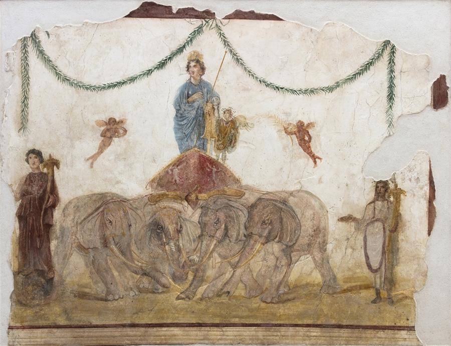 Venere su quadriga trainata da quattro elefanti, I sec. d.C., affresco. Pompei, officina di Verecundus (IX 7,7). Courtesy Parco Archeologico di Pompei. Foto © Amedeo Benestante.